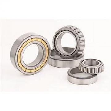 65 mm x 120 mm x 38.1 mm  Rollway E5213B Cylindrical Roller Bearings